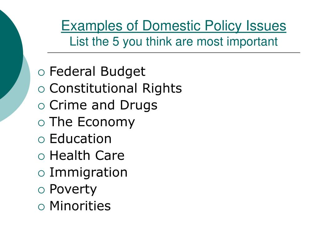 Examples of Domestic Policy Issues