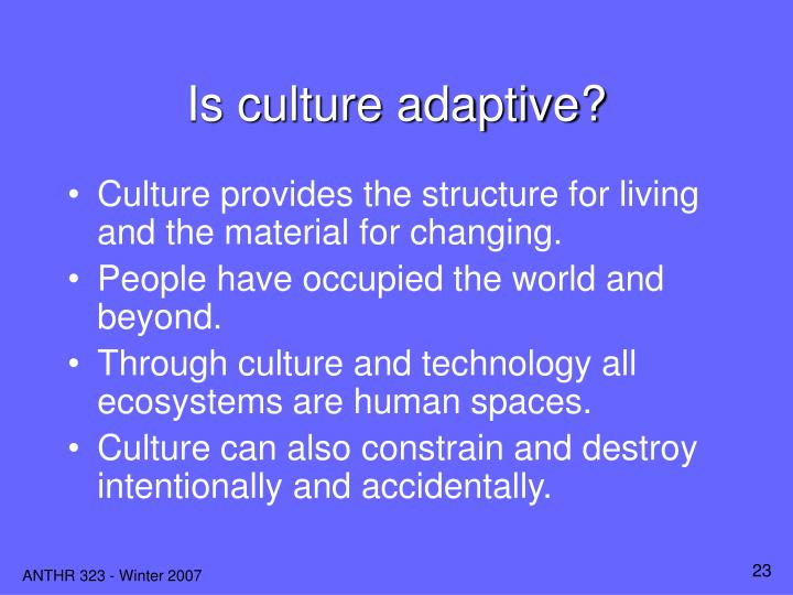 Is culture adaptive?