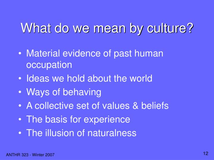 What do we mean by culture?