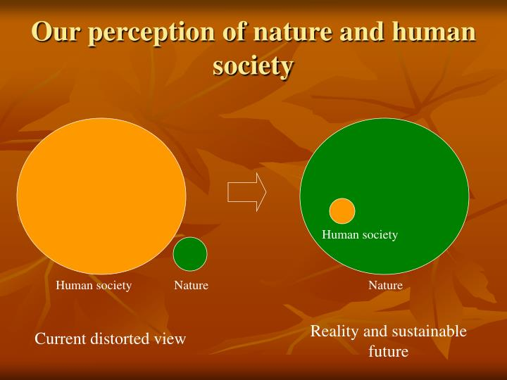 Our perception of nature and human society