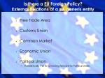 is there a eu foreign policy external relations of a sui generis entity