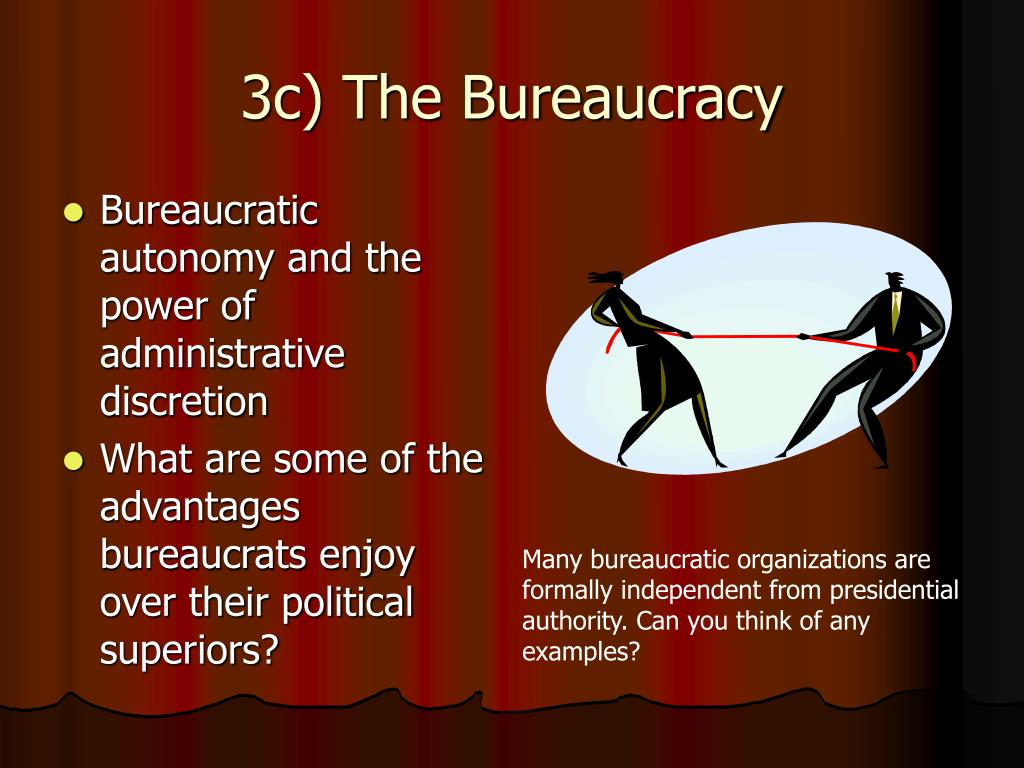 3c) The Bureaucracy