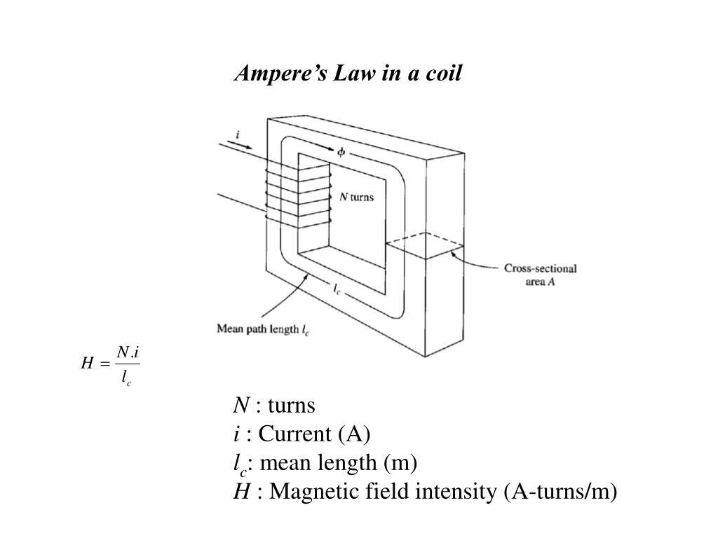 Ampere's Law in a coil
