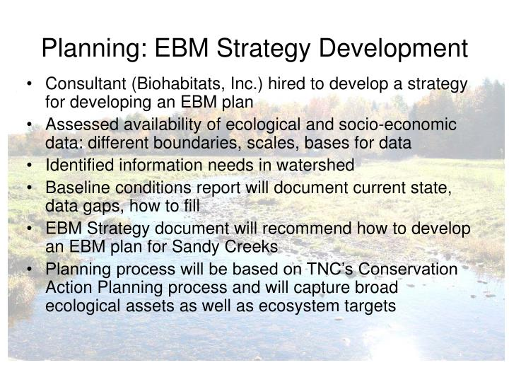 Planning: EBM Strategy Development