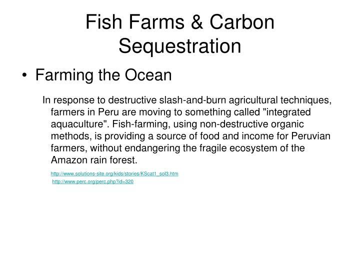 Fish Farms & Carbon Sequestration
