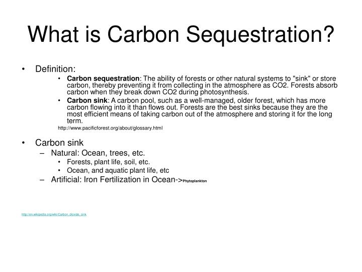 What is Carbon Sequestration?