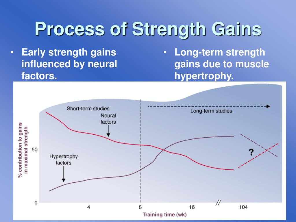 Early strength gains influenced by neural factors.