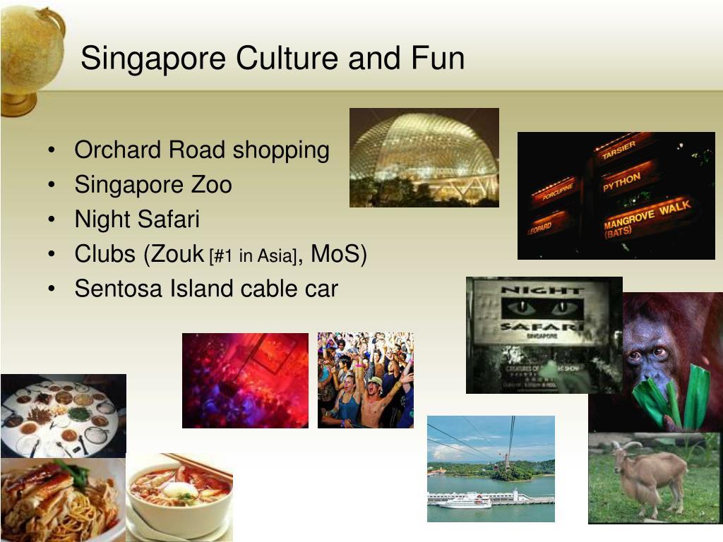 Singapore Culture and Fun