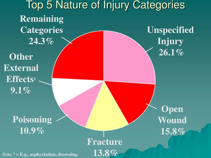 Top 5 Nature of Injury Categories