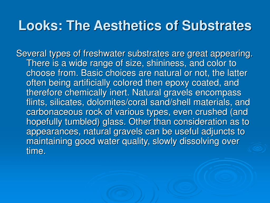 Looks: The Aesthetics of Substrates