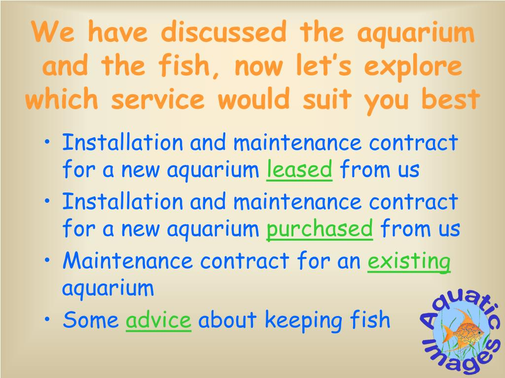 We have discussed the aquarium and the fish, now let's explore which service would suit you best