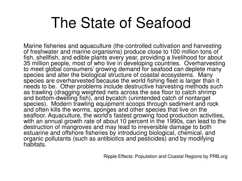 The State of Seafood