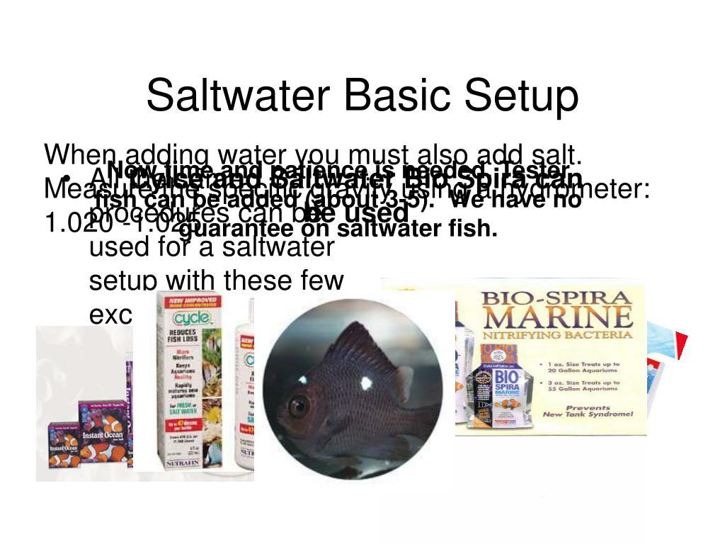 Saltwater Basic Setup