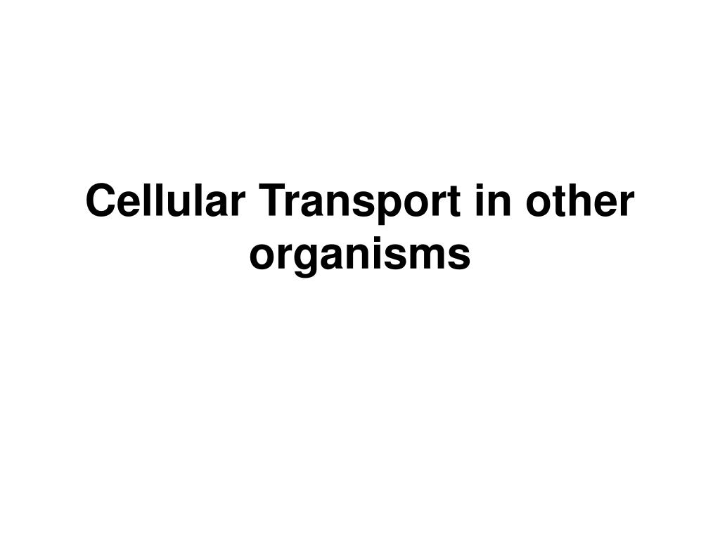 Cellular Transport in other organisms