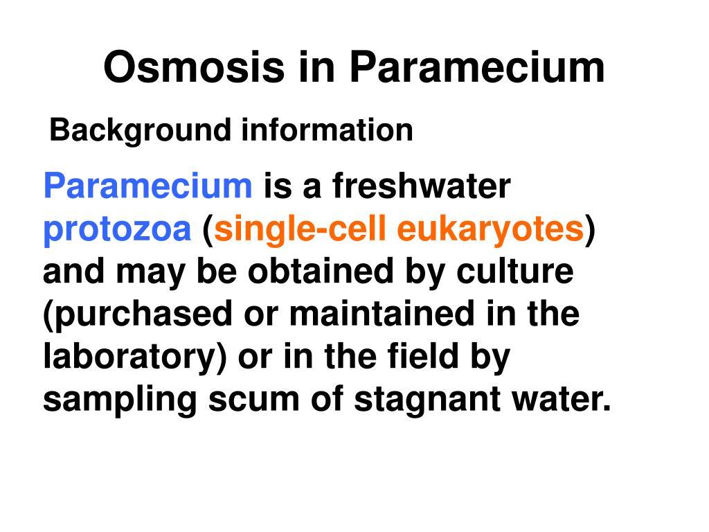 Osmosis in Paramecium