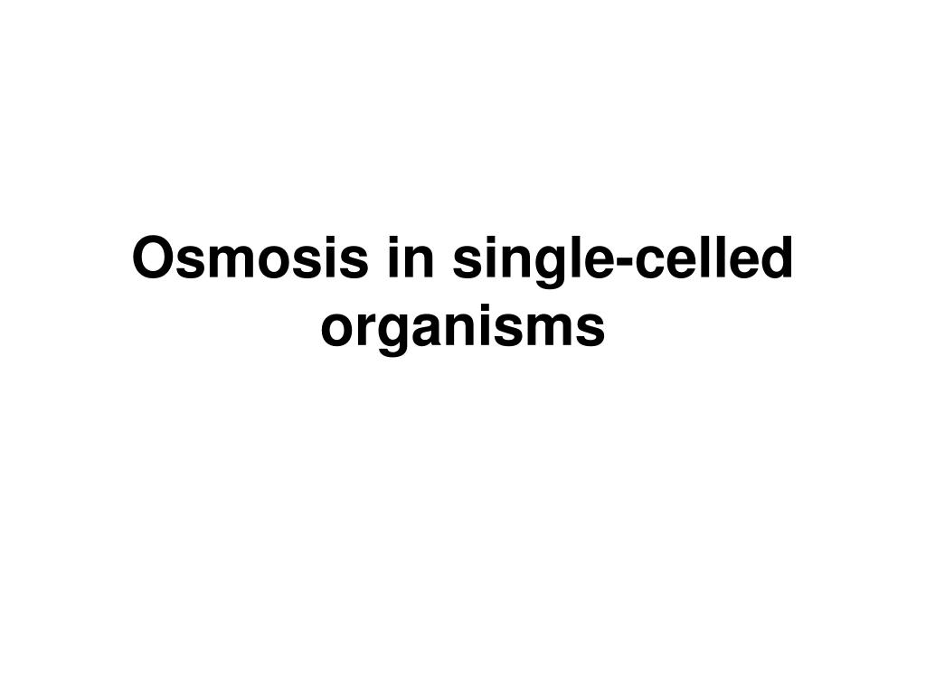 Osmosis in single-celled organisms