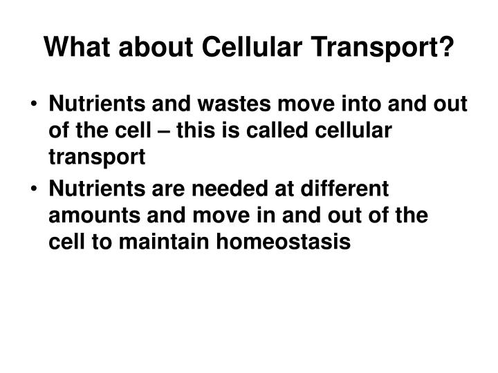 What about cellular transport