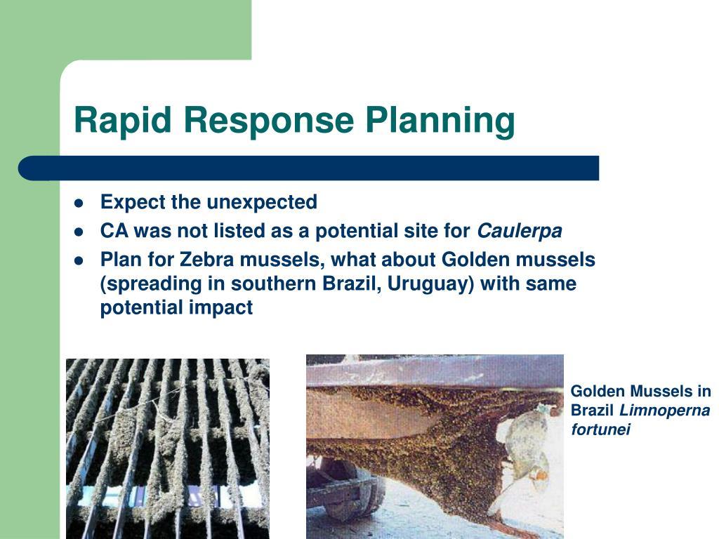 Rapid Response Planning
