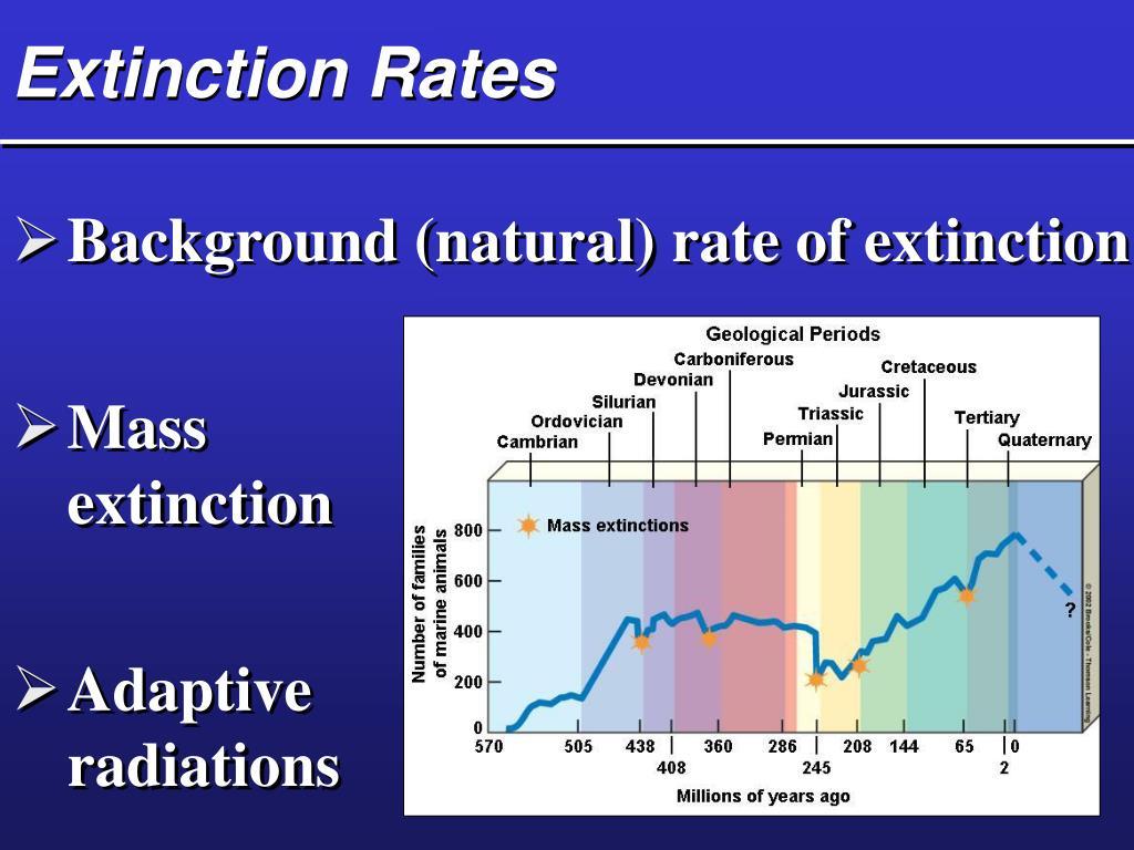 Extinction Rates