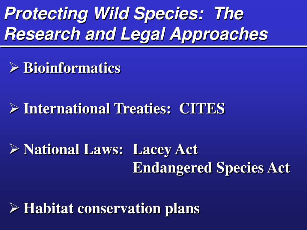 Protecting Wild Species:  The Research and Legal Approaches
