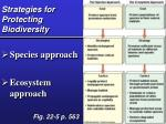 strategies for protecting biodiversity
