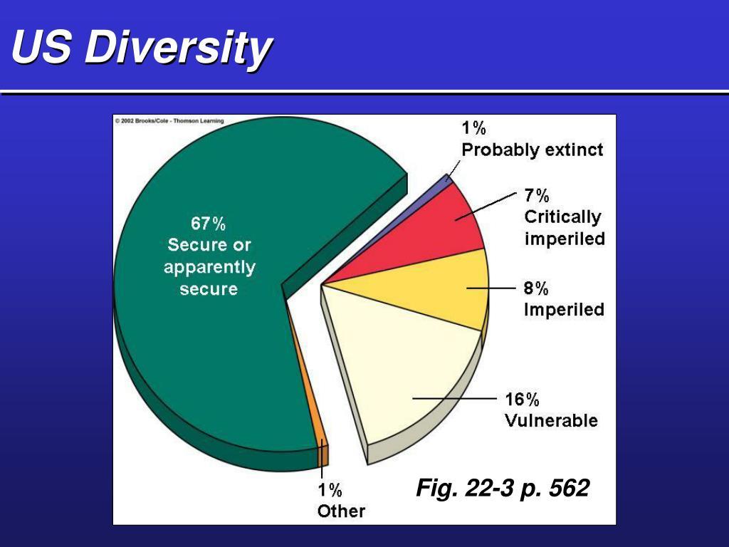 US Diversity