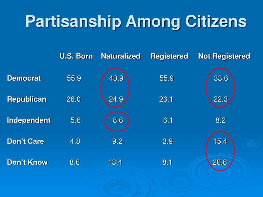 Partisanship Among Citizens