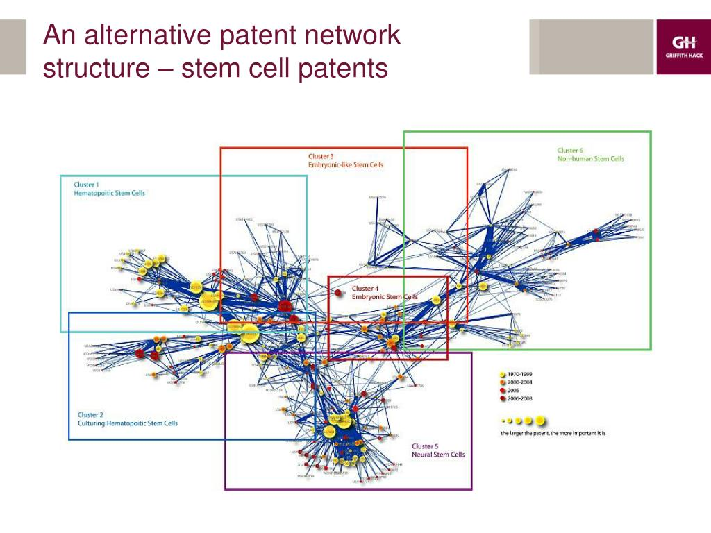 An alternative patent network structure – stem cell patents