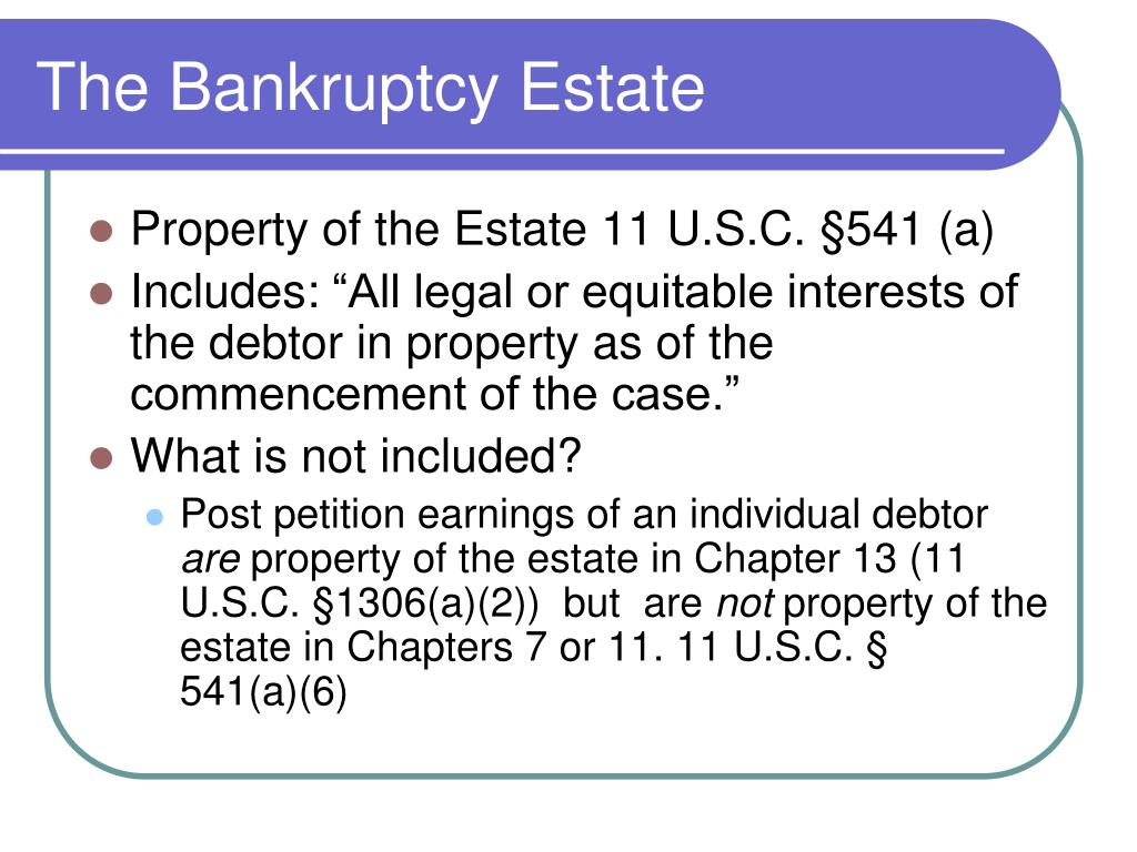 The Bankruptcy Estate