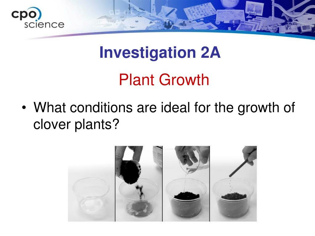Investigation 2A