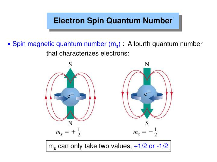 Electron Spin Quantum Number