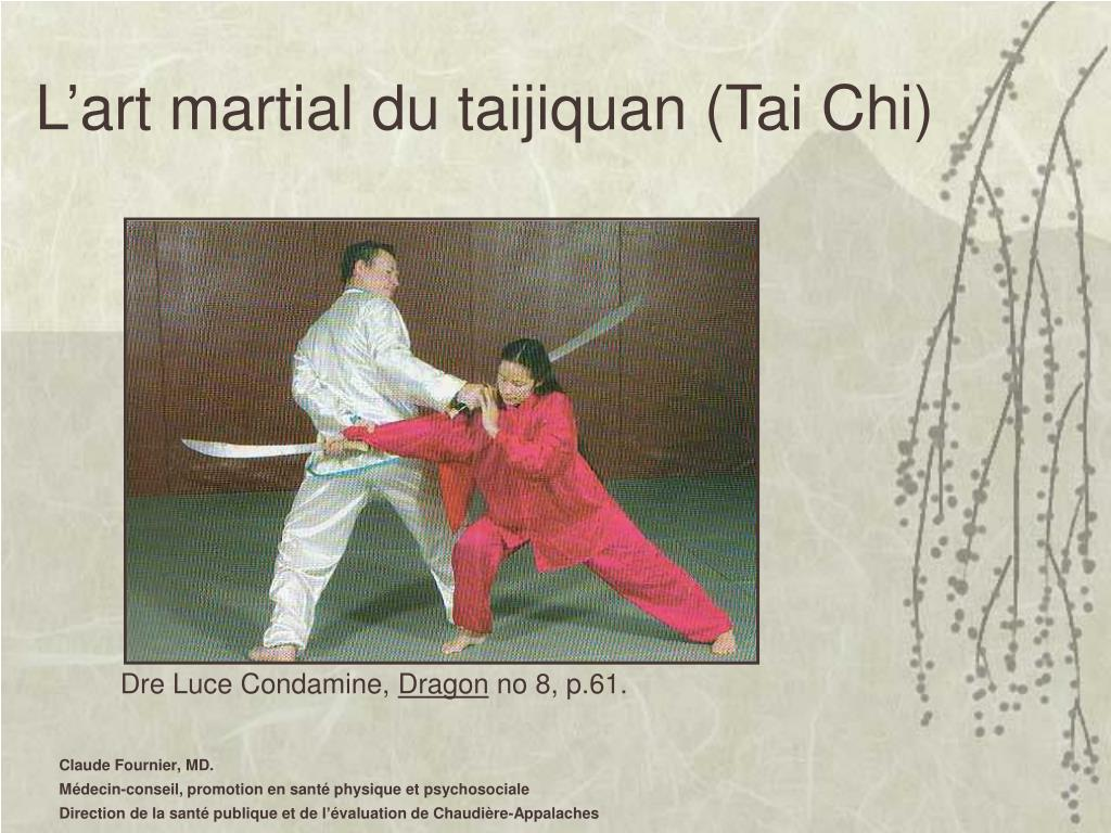 L'art martial du taijiquan (Tai Chi)