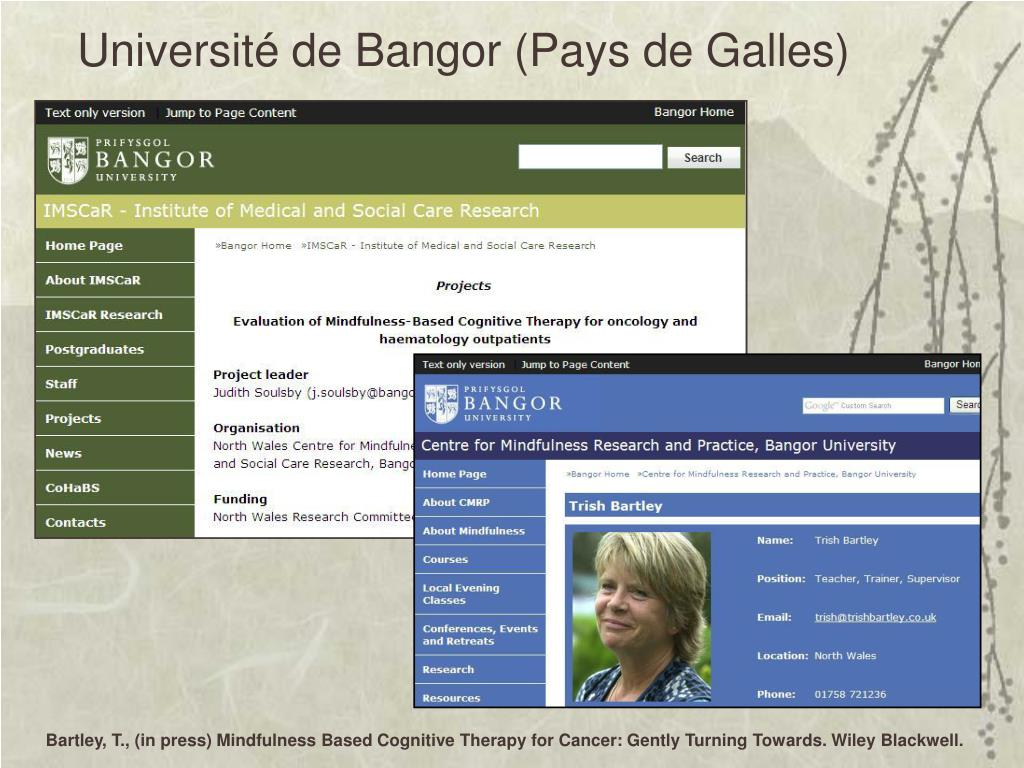 Université de Bangor (Pays de Galles)