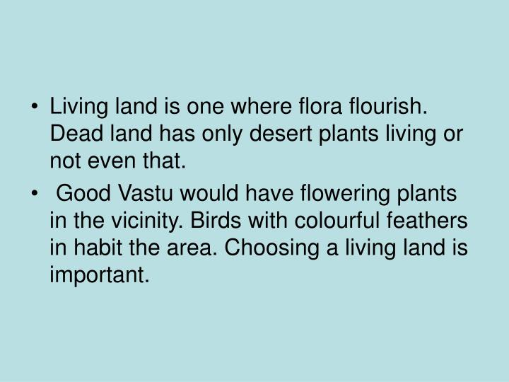 Living land is one where flora flourish. Dead land has only desert plants living or not even that.