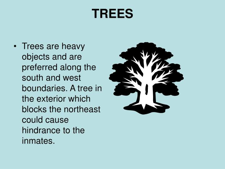Trees are heavy objects and are preferred along the south and west boundaries. A tree in the exterior which blocks the northeast could cause hindrance to the inmates.