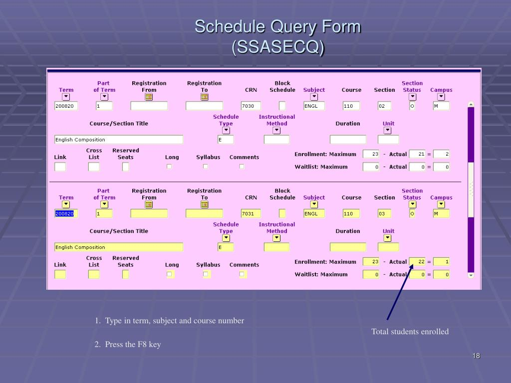Schedule Query Form (SSASECQ)