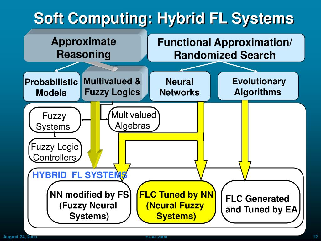 Soft Computing: Hybrid FL Systems