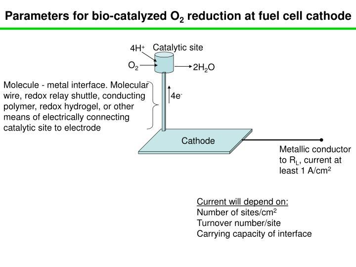 Parameters for bio-catalyzed O