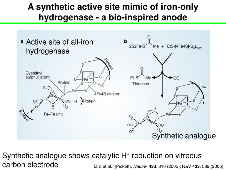 A synthetic active site mimic of iron-only hydrogenase - a bio-inspired anode