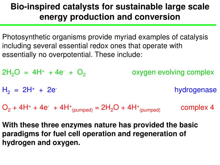Bio-inspired catalysts for sustainable large scale energy production and conversion