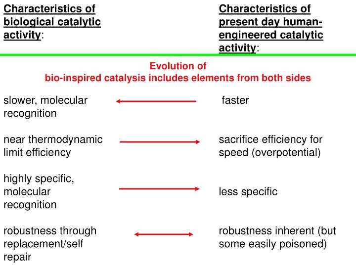 Characteristics of biological catalytic activity