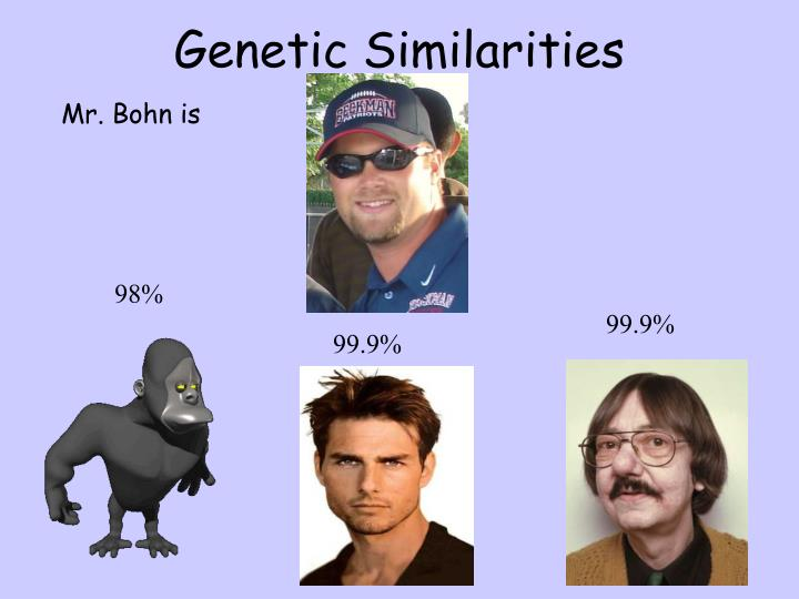 Genetic Similarities