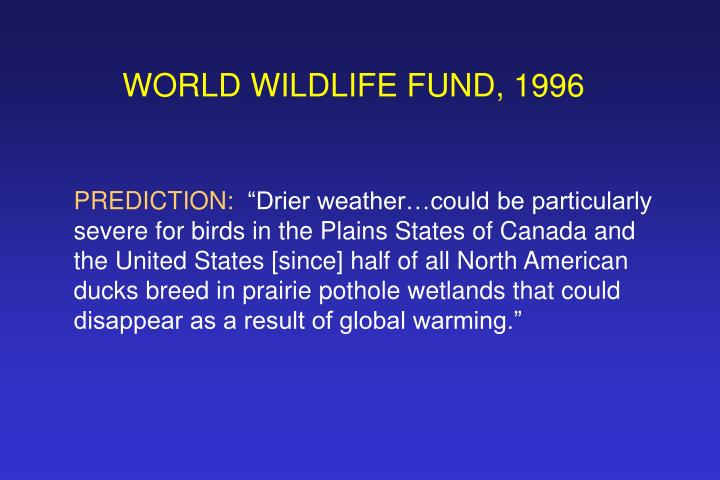WORLD WILDLIFE FUND, 1996