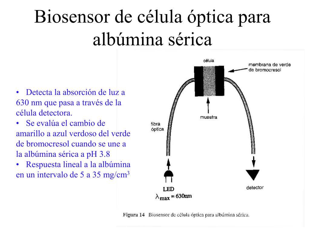 Biosensor de célula óptica para albúmina sérica