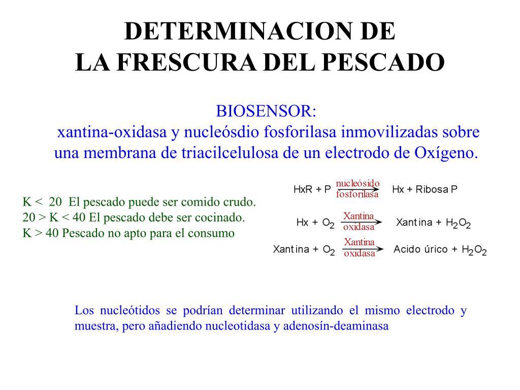 DETERMINACION DE