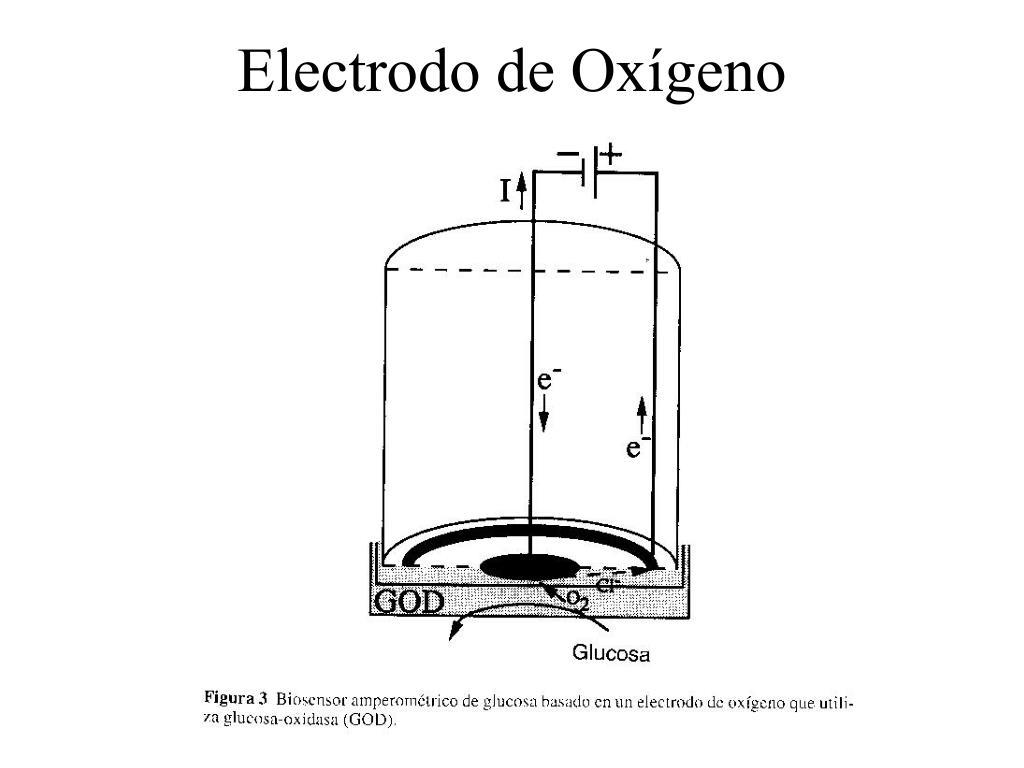 Electrodo de Oxígeno