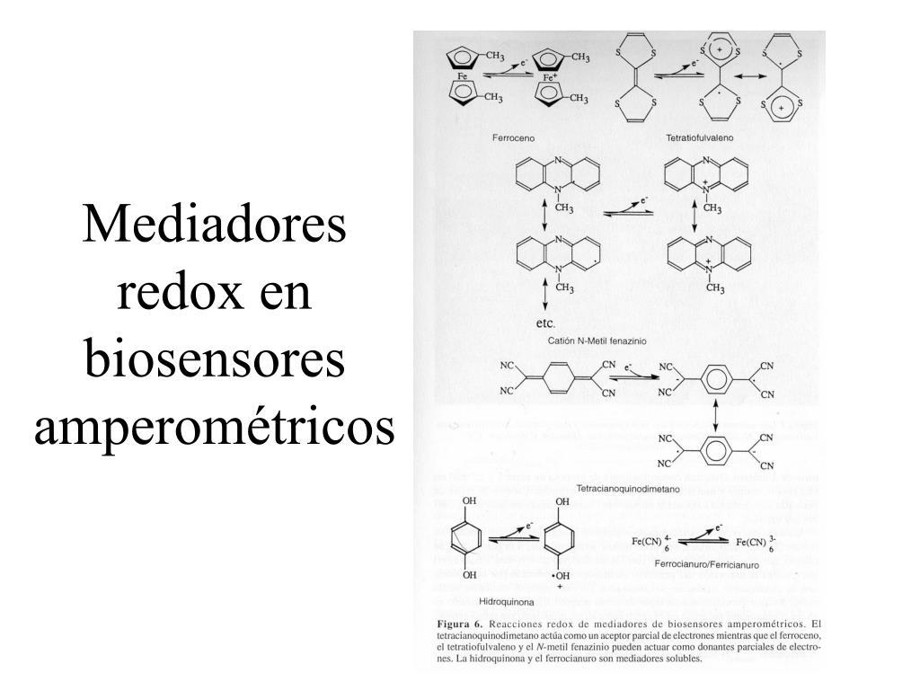 Mediadores redox en biosensores amperométricos