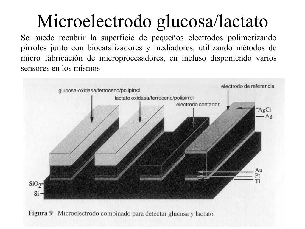 Microelectrodo glucosa/lactato