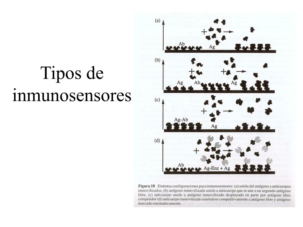 Tipos de inmunosensores