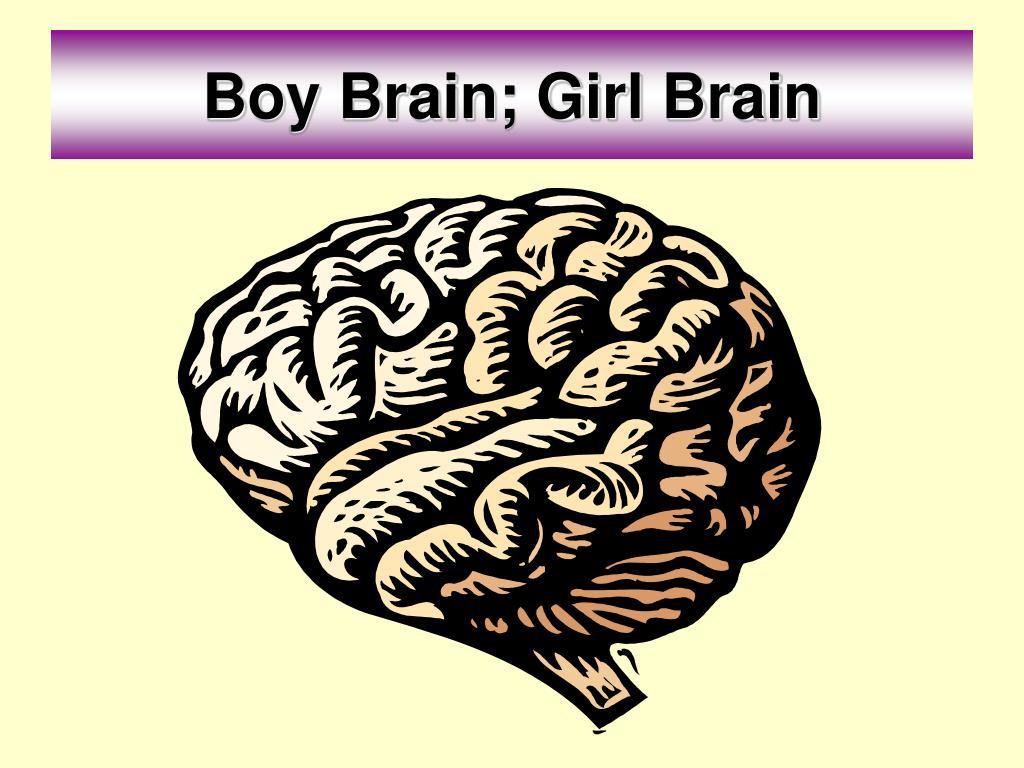 Boy Brain; Girl Brain